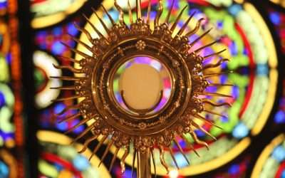 Celebrating Eucharistic Ministers